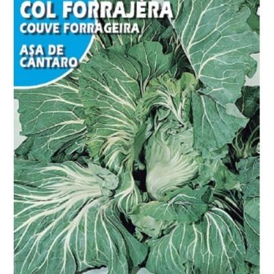 COL FORRAJERA ASA CANTA