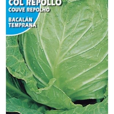 COL REPOLLO BACALAN